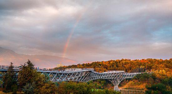 طراحی پل طبیعت چگونه آغاز شد؟