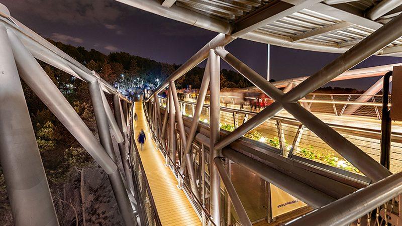 در طراحی پل طبیعت سازه و معماری از یکدیگر جدا نیست