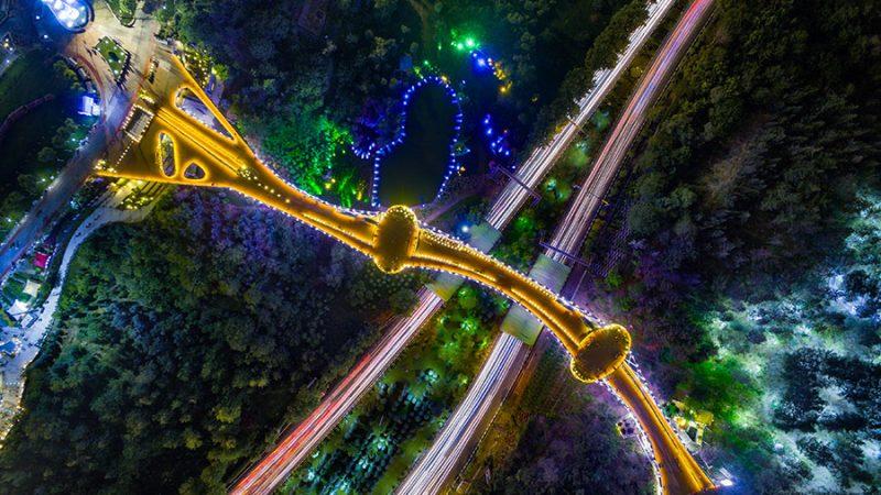 عکس هوایی پل طبیعت در شب