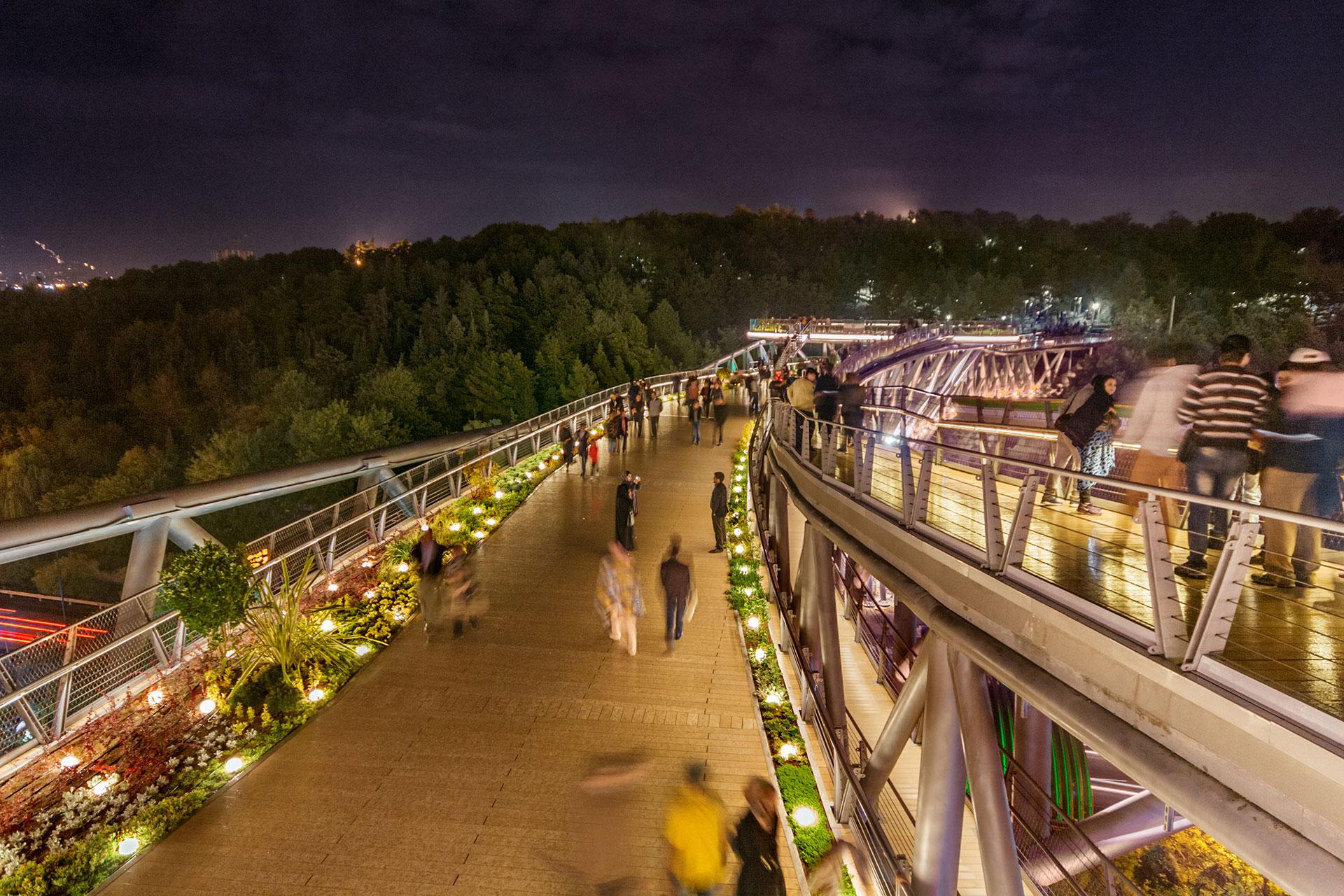 در هر طبقه از پل طبیعت چه می گذرد