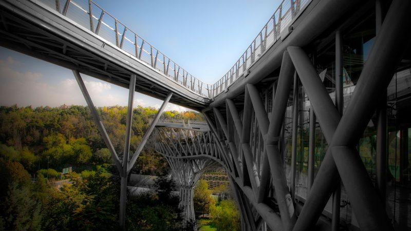 فرم کلی سازه پل طبیعت بصورت پیوسته