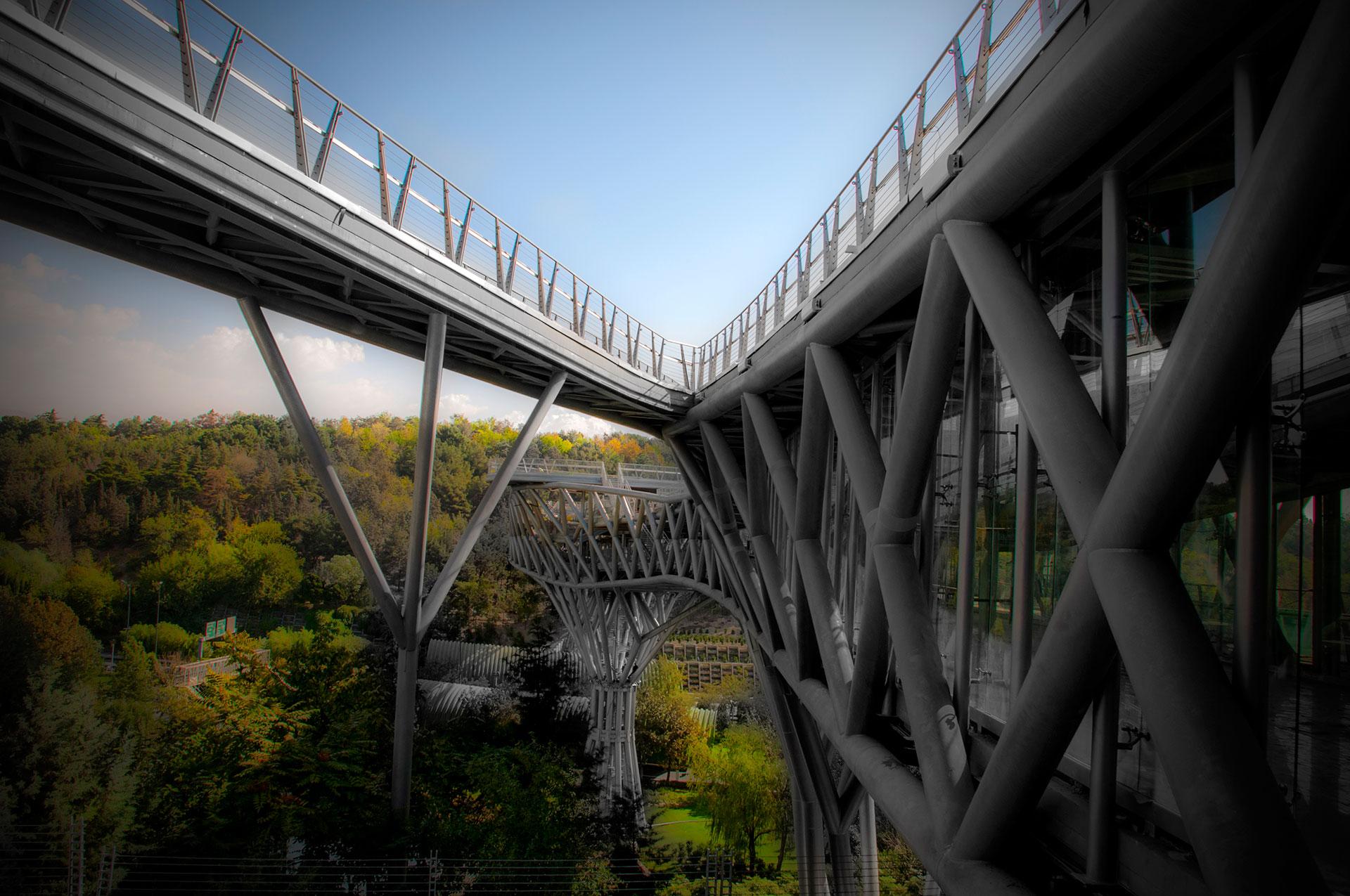 حفاظت از درختان و فضای سبز، یکی از مسائل مهم در طراحی پل طبیعت