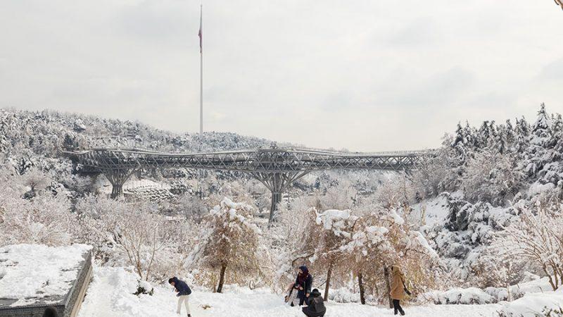 پل طبیعت برنده جایزه Architizer A+ در بخش پل و بزرگراهها، نیویورک، ایالت متحده امریکا