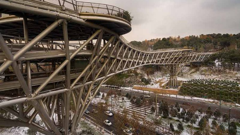 پل طبیعت با مساحت حدود 7950 مترمربع